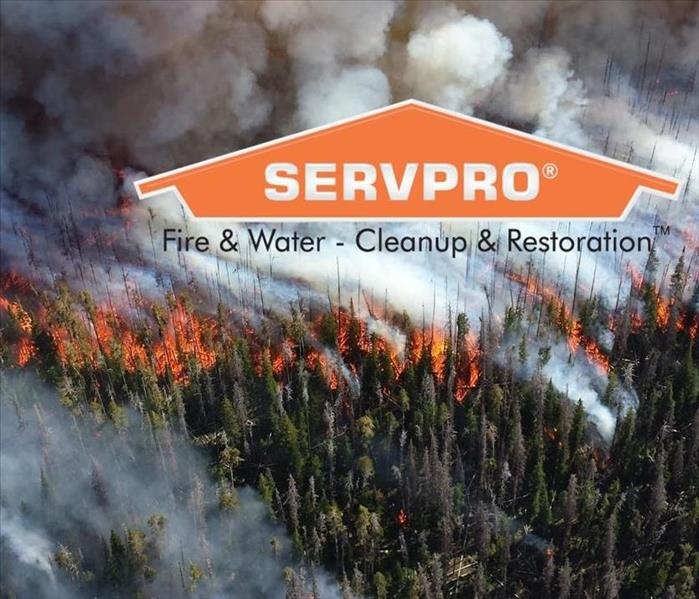 A wild fire burning with the SERVPRO logo.