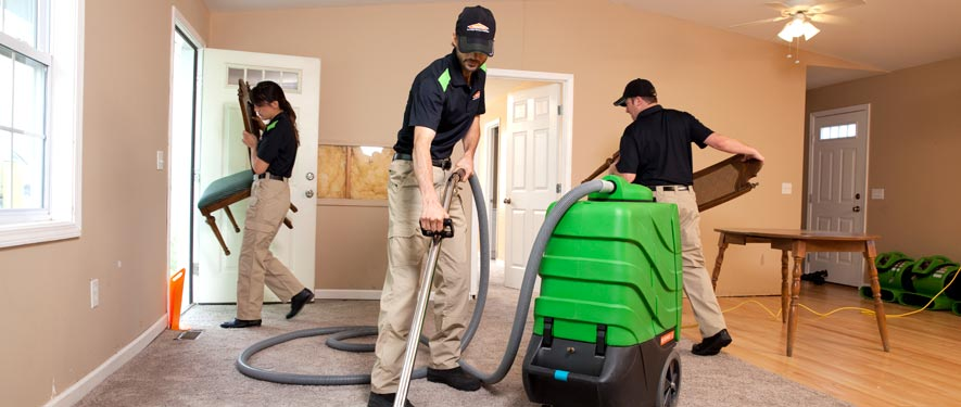 Albertville, AL cleaning services